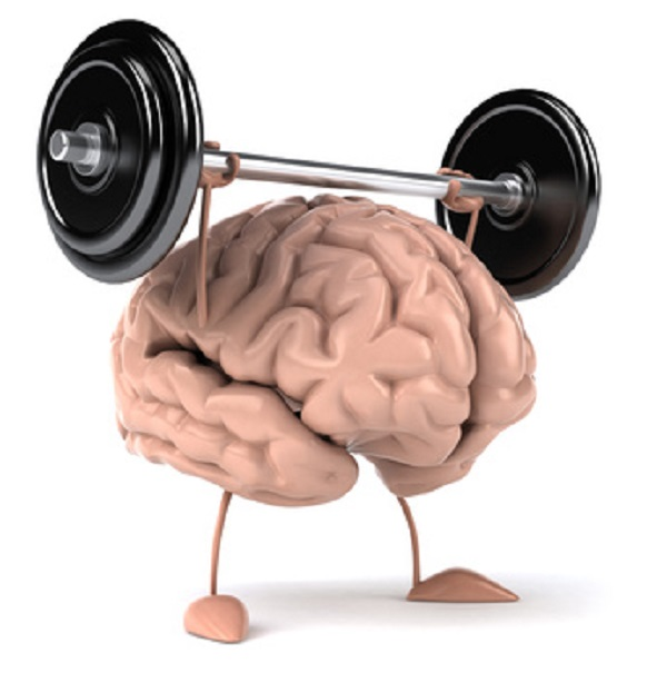 脳とバーベル