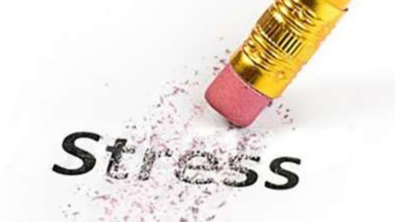 ストレスへの対処方法を知ろう。そして、対処法は複数あったほうがいい。