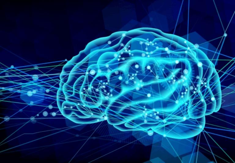 脳のシナプス